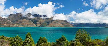 Lake Wakatipu, Queenstown, Nieuw-Zeeland van Markus Lange