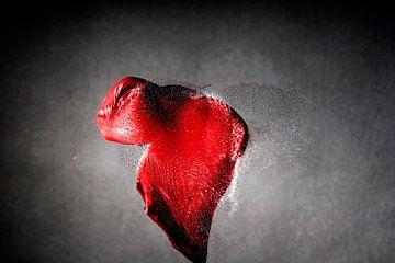 Hartaanval - exploading ballon in de tweede van schot door een kogel van pixxelmixx