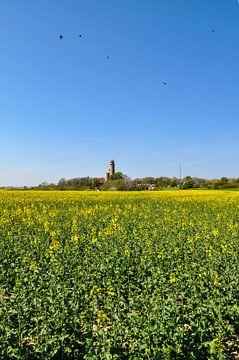 Schinkelturm und neuer Leuchturm Kap Arkona, Rapsfeld von GH Foto & Artdesign