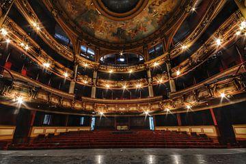 Theater van Marianne Pluim