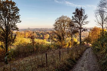 Herbst in Beertsenhoven von Rob Boon