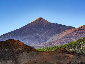 Paysage volcanique Teide sur Stijn Cleynhens