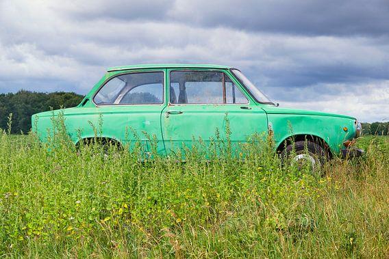 Grüner Daf-Pkw auf einer Sommerwiese