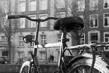 In Amsterdam von Ingrid Wilson