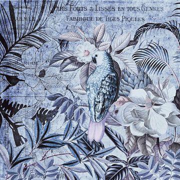 Papegaai in tropisch paradijs van Andrea Haase