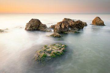 Zeesla en rotsen van Jenco van Zalk