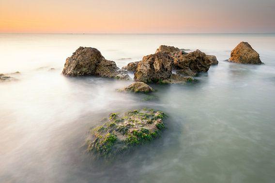 Zeesla en rotsen