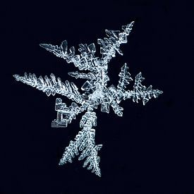 ijs-art-ijskristallen I van Klaartje Majoor