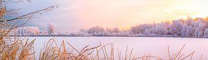 Winter in Pastel