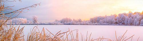 Winter in Pastel van