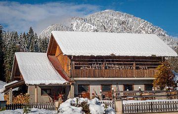Paardenstallen in een winters landschap van Mariette Alders