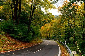 Herfst landschap van Ineke Huizing