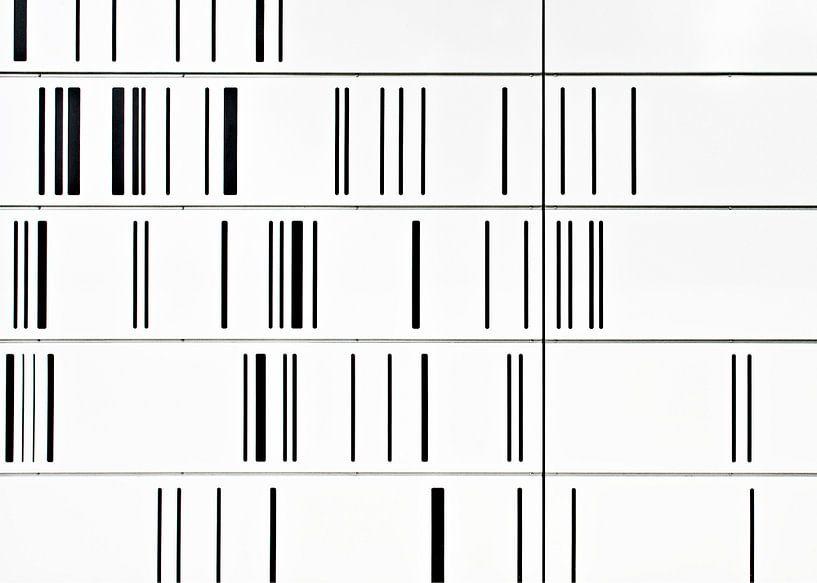 Streepjescode van Maerten Prins