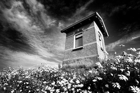 Häuschen am Deich, niederländische Küste (Schwarz-Weiß)