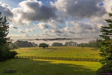 Prachtig uitzicht over een natuur landschap in Pembrokeshire in zuidwestelijk Wales Engeland van Ramon Harkema