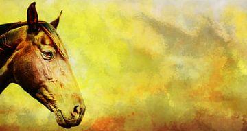Hoofd van een paard met een gekleurd achtergrond. van Jan Brons