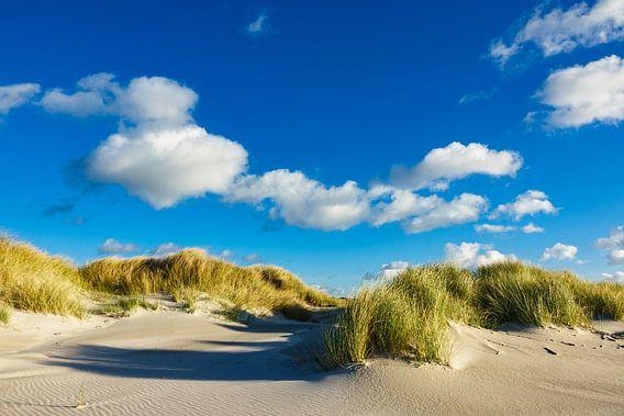 Dunes on the North Sea coast on the island Amrum