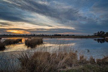 Sonnenuntergang Kalmthoutse Heide von Bruno Hermans
