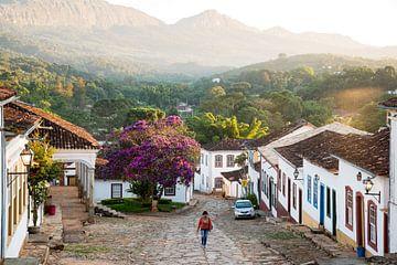Wandern in den treuen Bergen Brasiliens von Frank Alberti