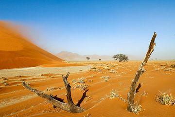Sandsturm Düne 40 van Britta Kärcher