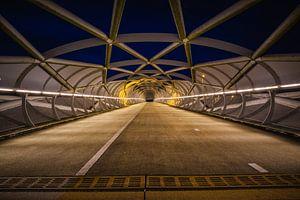De Netkous, fiets/ voetbrug in Rotterdam