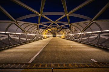 De Netkous, fiets/ voetbrug in Rotterdam van Jan van der Vlies