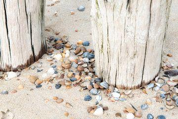 Strand met strandpalen en schelpen. van Ron van der Stappen