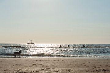 Vissersboot bij zonsondergang van Wouter Moné