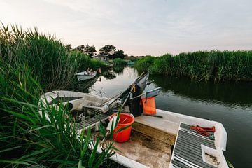 Fischerboot im Schilf von Matthias Nolde