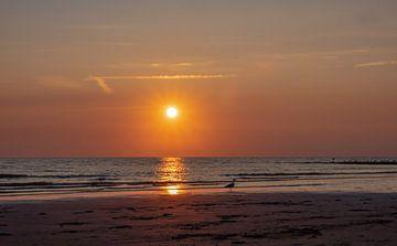 Zonsondergang aan het strand sur Natascha Worseling