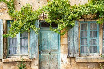 verveloze ramen en wijnranken van oud woonhuis in Morvan, Frankrijk van Jan Fritz