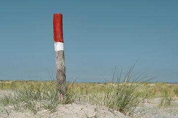 Piquets sur la plage sur Timo Brodtmann Fotografie