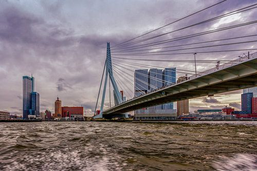 Skyline Rotterdam van
