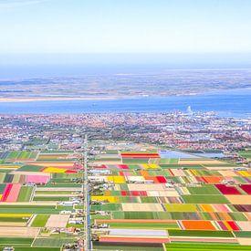 Panorama bloembollen Texel en Noord-Holland van Robert Riewald