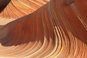 The Wave in the North Coyote Buttes