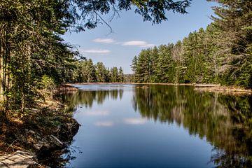 Vrij uitzicht over een meer in Canada van Farzad Madjdian