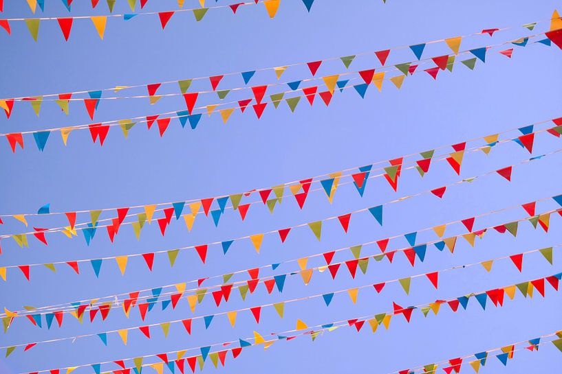 Des drapeaux colorés sur Nele Vereecke