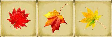 Triptychon Herbst von Rietje Bulthuis