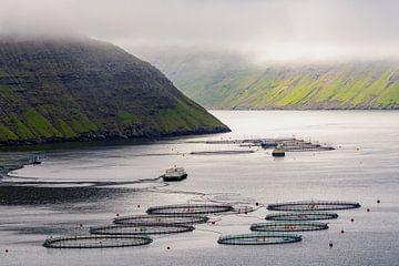 Zalmkwekerij op de Faeröer eilanden van Nana Design