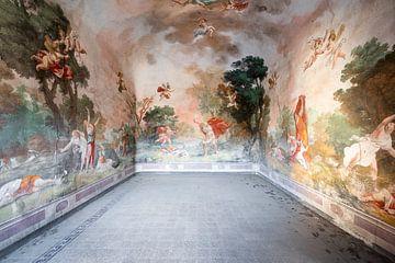 Fresque dans le palais abandonné. sur Roman Robroek
