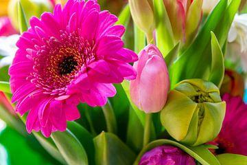 Gerbera und Tulpen von Studio Bosgra