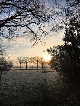Zonsopkomst op een hollandse winterdag van Sandra van der Burg