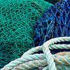 Visnetten van Greetje van Son thumbnail