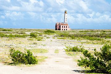 Lighthouse van Joke Van Eeghem