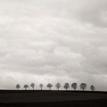 Minimal Land  Art von Lena Weisbek