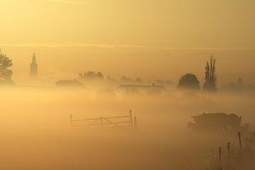 Ochtend landschap met mist over de weilanden bij Nijkerk. Zen, rust van Bobsphotography