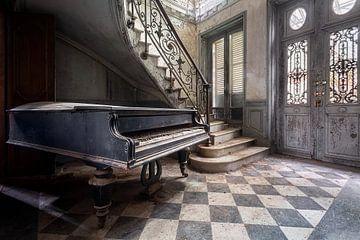 Accueil joueur de piano. sur Roman Robroek