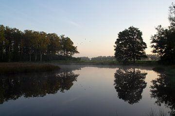 Ruhiger Morgen auf der Veluwe am Wasser von Esther Wagensveld