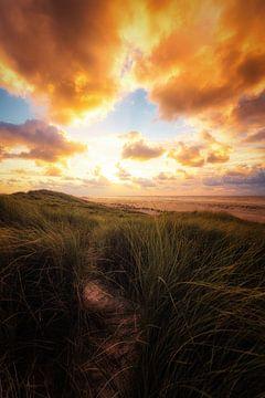Spaziergang bei Sonnenuntergang von Cho Tang