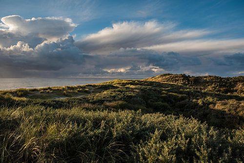 Duinen van Zeeland van Mascha Boot